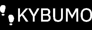 icon-left-font-monochrome-white